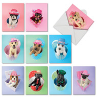 Hat Dogs, Assorted Set Of Mini Birthday Greeting Cards - AM2955BDG