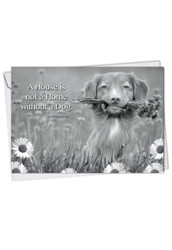 C1623FOC - Canine Comments: Greeting Card