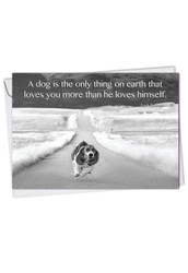 C1623JOC - Canine Comments: Greeting Card
