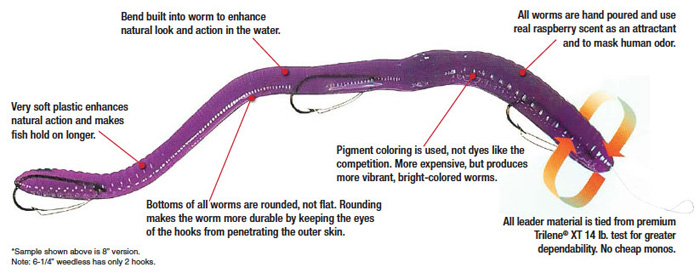Information on The Worm Bait