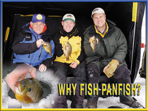 why-panfish.jpg