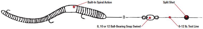 worm-rigging.jpg