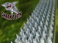 Shark Teeth Varmint Protection
