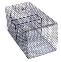 505 Pied Piper Turtle Trap