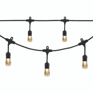 Enbrighten Cafe Vintage 35631 Vintage LED Cafe Lights (48ft; 24 Acrylic Bulbs)