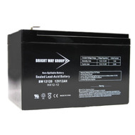 Bright Way Group BW 12120 F1 (0193) BWG 12120 F1 Battery