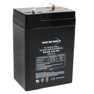 Bright Way Group BW 645 F1 (0010) BWG BW 645 F1 Battery