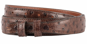 "Full-Quill Ostrich 1 1/4 - 3/4"" Tapered Belt Strap - Sienna 1"
