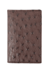 Ostrich Gusseted Card Case - Brown - Front