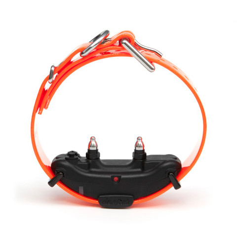 Dogtra ARC Extra Collar Orange Orange (ARC-ADD-RX)