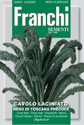 CAVOLO NERO (Cavolo laciniato) di Toscana precoce