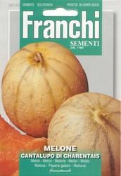 MELON (Melone) cantalupo di Charentais SPECIAL