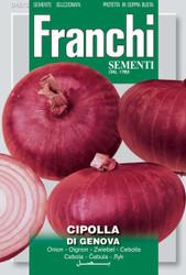ONION (Cipolla) di Genova SPECIAL