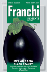 EGGPLANT (Melanzana) black beauty