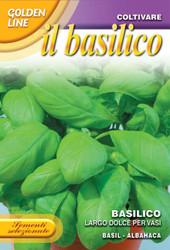 BASIL (Basilico) Largo Dolce Per Vasi