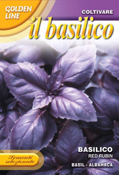BASIL (Basilico) Red Rubin GOLDEN RANGE