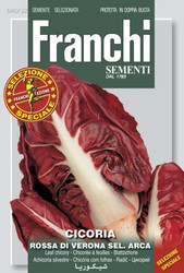 RADICCHIO (Cicoria) rossa di Verona sel Arca