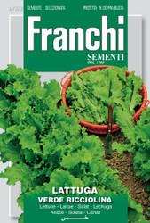 LETTUCE (Lattuga) Verde Ricciolina