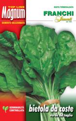 CHARD (Bietola) verde de taglio MAGNUM 30g SPECIAL