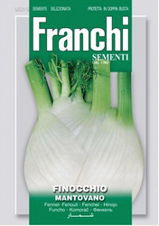 FENNEL (Finocchio) Mantovano