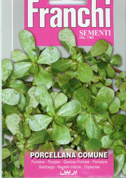 PURSLANE (Porcellana)