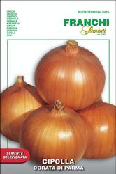 Onion (Cipolla)  Dorata Di Parma