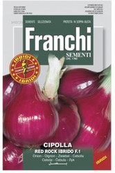 ONION (CIPOLLA) Red Rock Hybrid F1