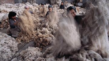 yarn-alpaca-2.jpg
