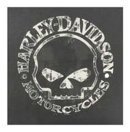 Harley-Davidson Men's Willie G Skull Long Sleeve T-Shirt Tee Charcoal 30296652 - Wisconsin Harley-Davidson