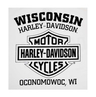 Harley-Davidson Men's Road Jester Skull Long Sleeve Crew-Neck Shirt, White - Wisconsin Harley-Davidson