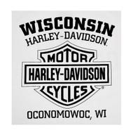 Harley-Davidson Men's Rise Up Winged B&S Long Sleeve Crew Neck Shirt, White - Wisconsin Harley-Davidson