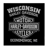 Harley-Davidson Men's Gauntlet Eagle Long Sleeve Crew Neck Shirt, Black - Wisconsin Harley-Davidson