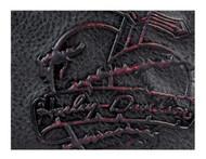 Harley-Davidson Women's Red Dagger Hip Bag w/Detachable Strap DG9241L-REDBLK - Wisconsin Harley-Davidson