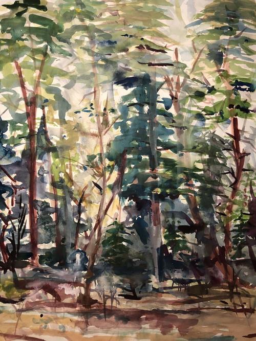 "'Little Forest' by Artist Clara Dennison, Watercolor, 11"" x 14"""