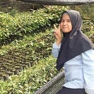Dean's Beans Moka Sumatra