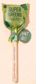 Modern Sprout Seed Lollipop - Super Greens Blend