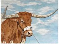 Longhorn Proud Bevo XV Signed Print by Cathy Munson