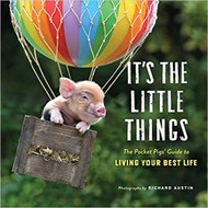 It's the Little Things Book (9781523508297)