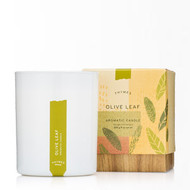 Thymes Olive Leaf Poured Aromatic Candle 9 oz