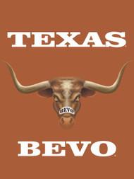 Texas Longhorn 3D Bevo  Garden Flag (013131864EYE)