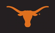 Texas Longhorn Applique Bevo Flag (013030511B)