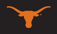 Texas Longhorn Applique Bevo Flag (013030511B)