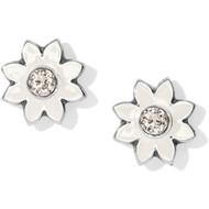 Brighton Jasmine Mini Post Earrings (J22180)