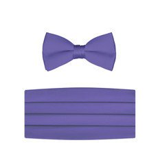 New Purple Bow Tie and Cummerbund set