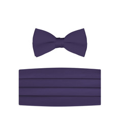 New Lapis Purple Bow Tie and Cummerbund Set