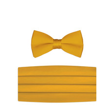 New Golden Bow Tie and Cummerbund Set
