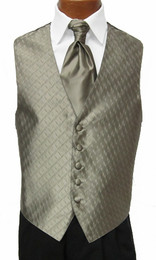 Champagne Spectrum Vest with Sharpei Long Tie