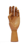 419332, Wooden Hand, Female (Left hand)