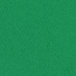 341626, Canson Mi-Teintes, Viridian