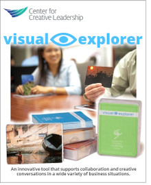 Visual Explorer Kit